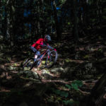 electric MTB in Welsh forest